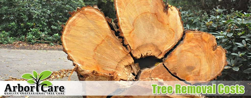 Tree Removal Costs - Arbor Care Tree Care