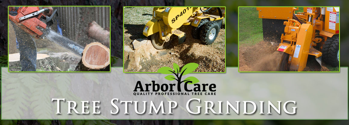 Stump Removal Grinding