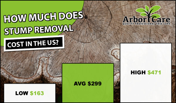 How Much Does Stump Removal Cost?
