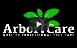 Quality Professional Tree Care Near You - Youtube Video