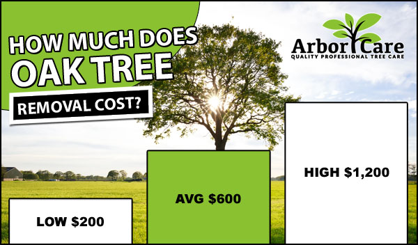 Oak Tree Removal Cost