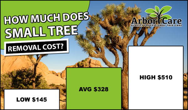 Tree Removal Cost 2019 Average Prices Near Me