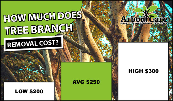 Tree Branch Removal Cost