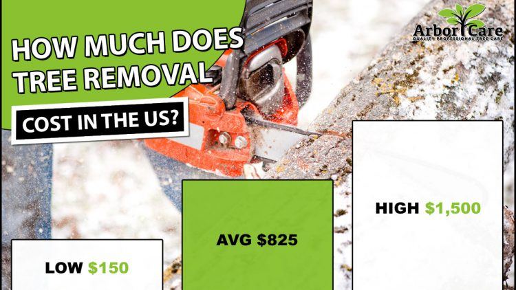 Average Tree Removal Prices